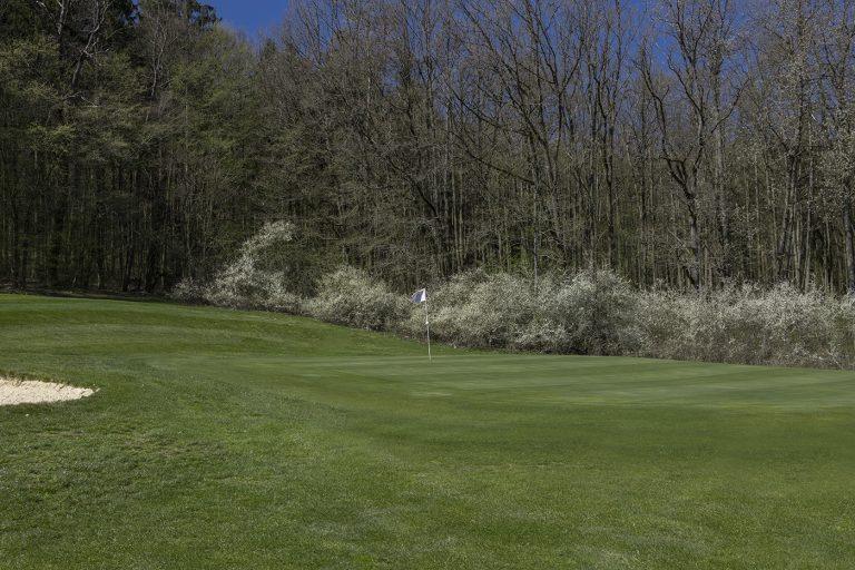 GCO_Golfplatz_Loch12_40
