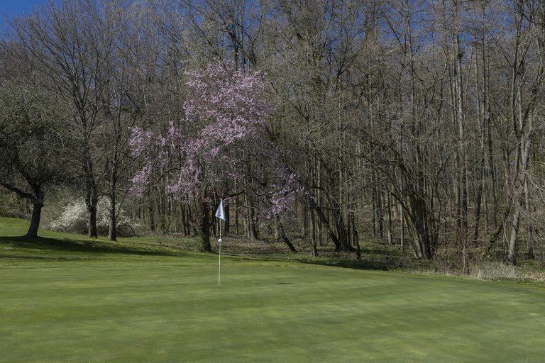 GCO_Golfplatz_Loch14_46