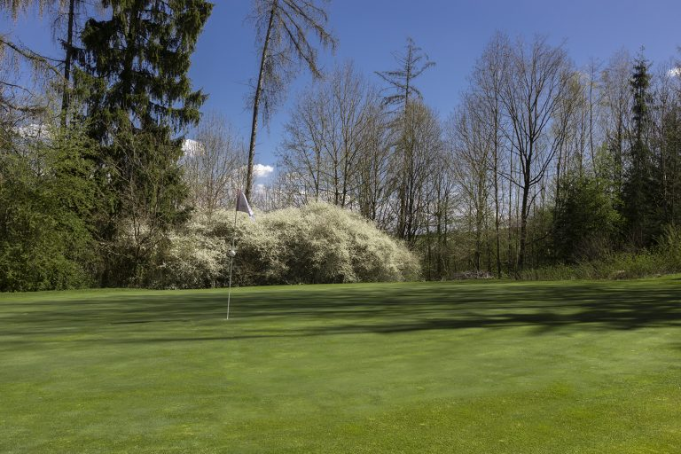 GCO_Golfplatz_Loch15_50